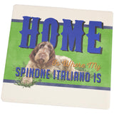 Home is Where My Spinone Italiano Is Square Sandstone Coaster