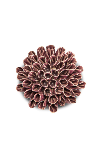 Medium Anemone Purple