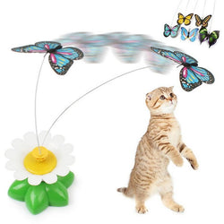 Electric Butterfly Cat Toy - Aladdin's Treasures