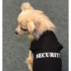 Cute Security Jacket - Aladdin's Treasures