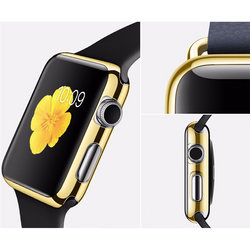 Cover for Apple iWatch Series 2 - Aladdin's Treasures