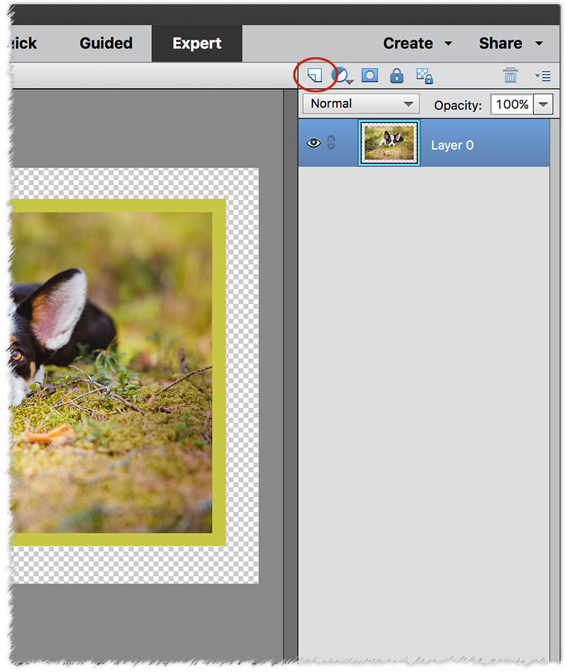 5 Quick and Easy Photo Borders Using Photoshop Element