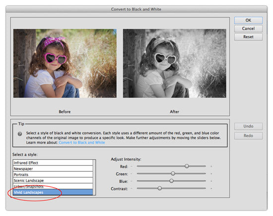 convert to black and white photoshop elements