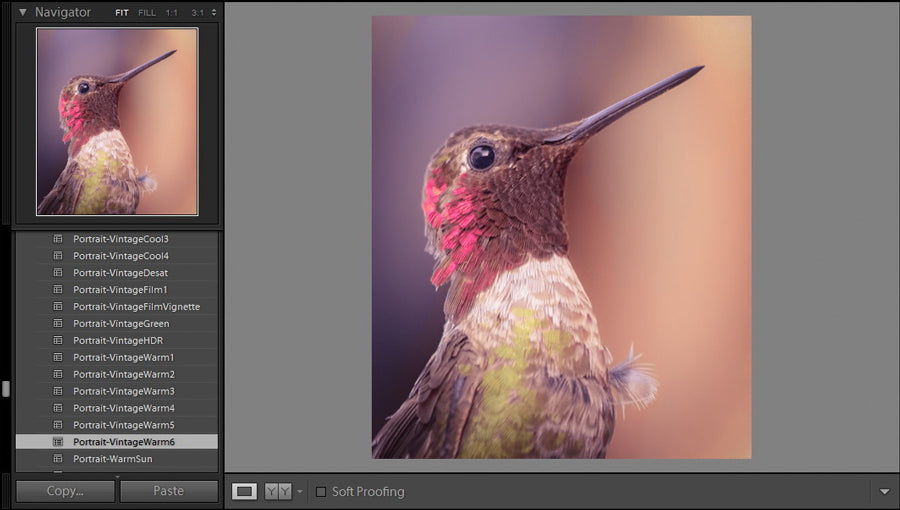 getting started with lightroom presets