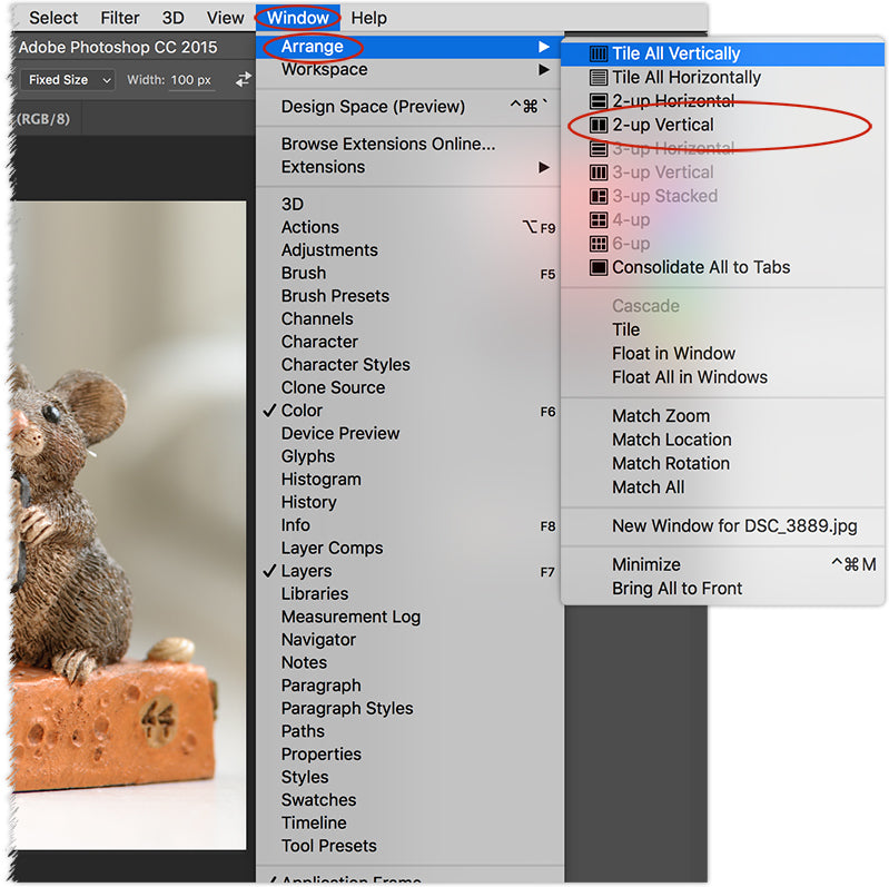 Photoshop and Elements Editing Tip – Dual View