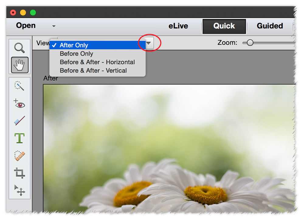 using quick edit in photoshop elements