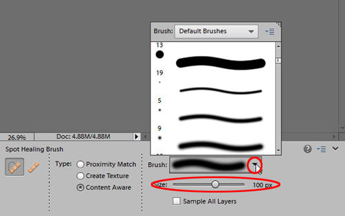 remove blemishes with photoshop elements