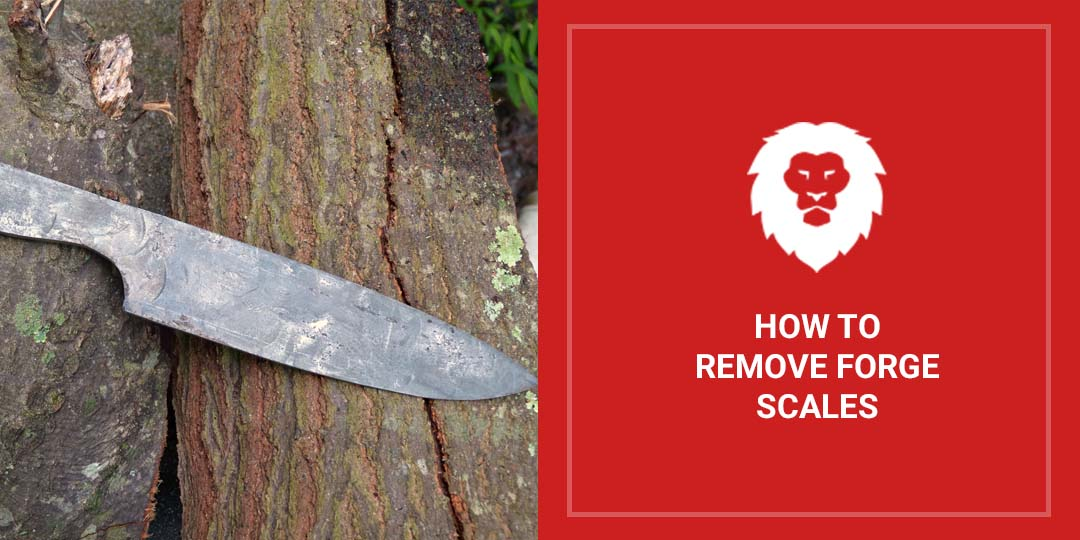 How To Remove Forge Scales
