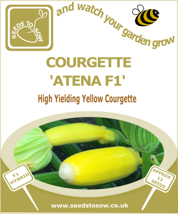 Courgette Atena F1 - Seeds to Sow Limited