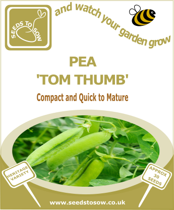 Pea Tom Thumb - Seeds to Sow Limited