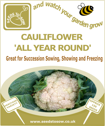 Cauliflower All Year Round - Seeds to Sow Limited