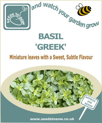 Basil  Greek - Seeds to Sow Limited