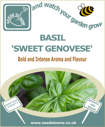 Basil Sweet Genovese - Seeds to Sow Limited