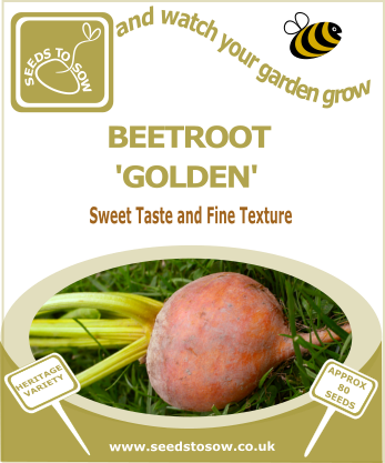 Beetroot Golden - Seeds to Sow Limited