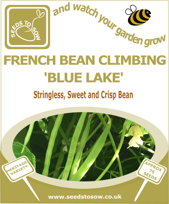 French Bean Climbing Blue Lake - Seeds to Sow Limited