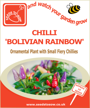 Chilli Bolivian Rainbow - Seeds to Sow Limited