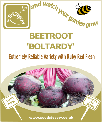 Beetroot Boltardy - Seeds to Sow Limited