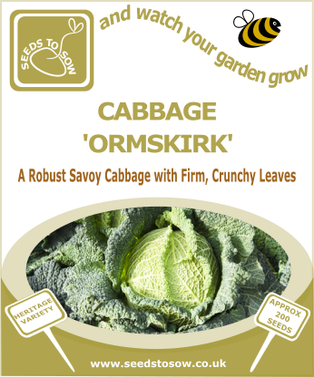 Cabbage Ormskirk - Seeds to Sow Limited