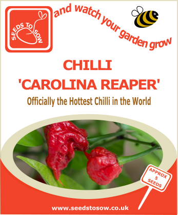 Chilli Carolina Reaper Seeds to Sow