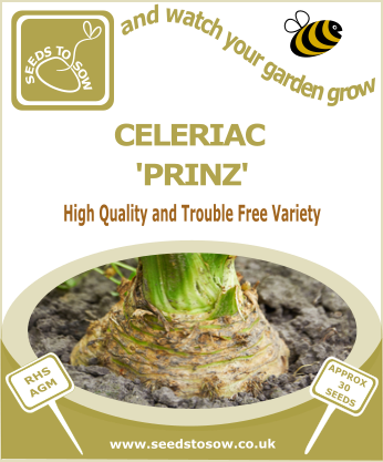 Celeriac Prinz - Seeds to Sow Limited
