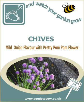Chives - Seeds to Sow Limited