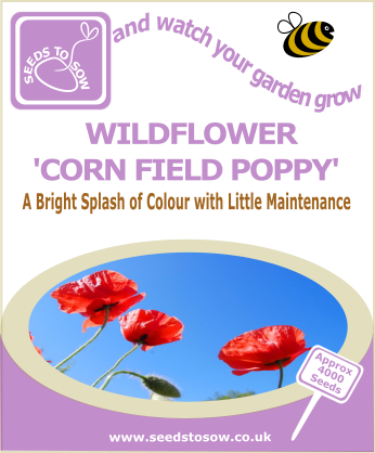 Wildflower - Corn Field Poppy - Seeds to Sow Limited