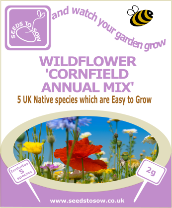 Wildflower - Cornfield Annual Mix - Seeds to Sow Limited