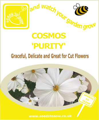Cosmos - Purity - Seeds to Sow Limited