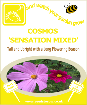 Cosmos - Sensation mixed