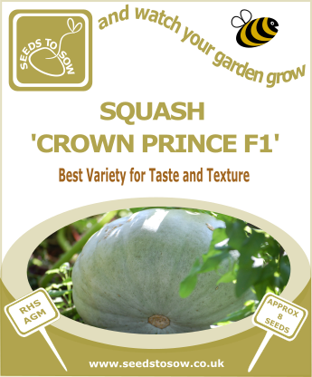 Squash Crown Prince F1 - Seeds to Sow Limited