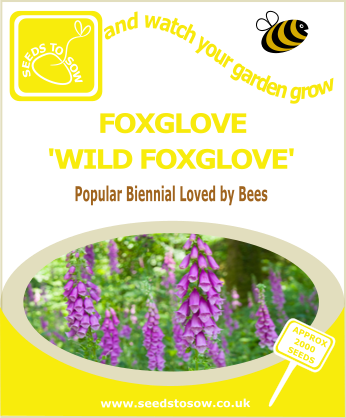 - Collection Box - Perennial Flower Seed Collection - Seeds to Sow Limited