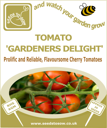 Tomato Gardeners Delight - Seeds to Sow Limited