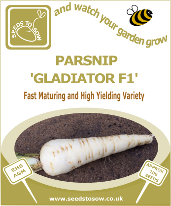 Parsnip Gladiator F1 - Seeds to Sow Limited