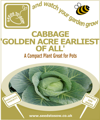 Cabbage Golden Acre Earliest of all - Seeds to Sow Limited