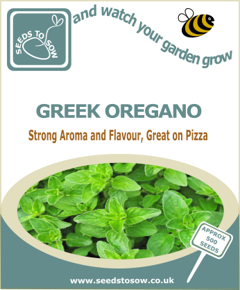 Oregano Greek - Seeds to Sow Limited