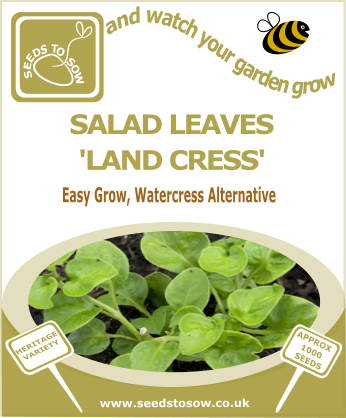 Salad Leaves Land Cress - Seeds to Sow Limited