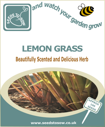 Lemongrass - Seeds to Sow Limited