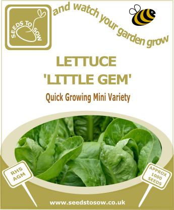 Lettuce Little Gem - Seeds to Sow Limited