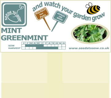 Mint (Greenmint) - Seeds to Sow Limited
