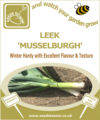 Leek Musselburgh - Seeds to Sow Limited