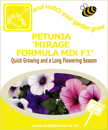 Petunia - Mirage Formula Mix F1 - Seeds to Sow Limited