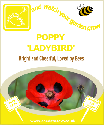 Poppy - Ladybird - Seeds to Sow Limited