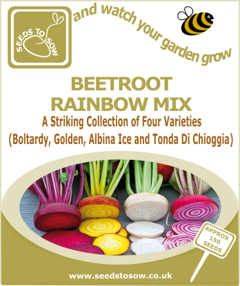 Beetroot Rainbow Mix - Seeds to Sow Limited