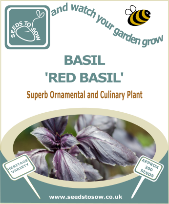 Basil Red Basil - Seeds to Sow Limited