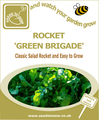 Salad Leaves Rocket 'Green Brigade' - Seeds to Sow Limited