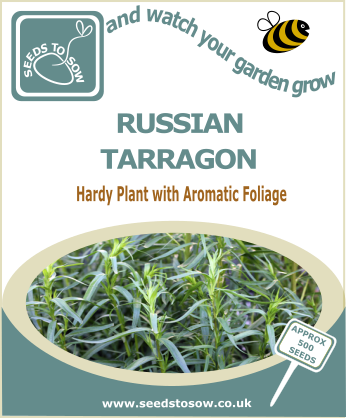 Russian Tarragon - Seeds to Sow Limited