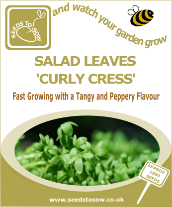 Salad Leaves Curly Cress - Seeds to Sow Limited