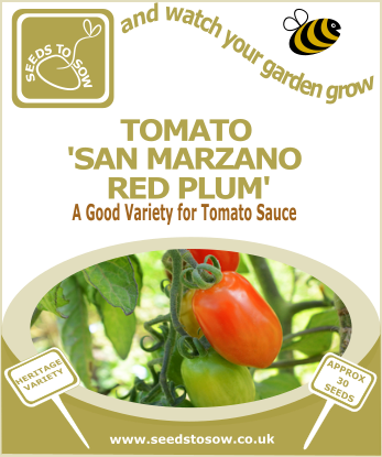 Tomato San Marzano Red Plum - Seeds to Sow Limited