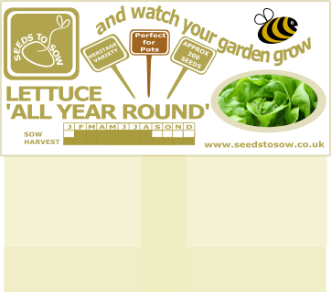Gift Range - Birthday Card - Lettuce Celebrate - Seeds to Sow Limited