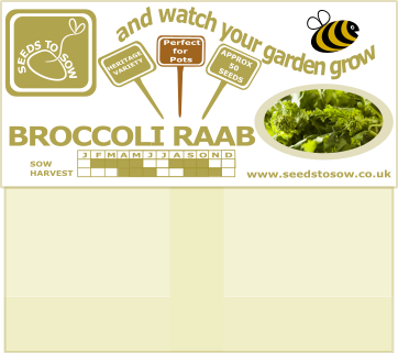 Broccoli Raab (Cima Di Rapa) - Seeds to Sow Limited